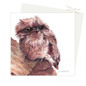 Frogmouth Card