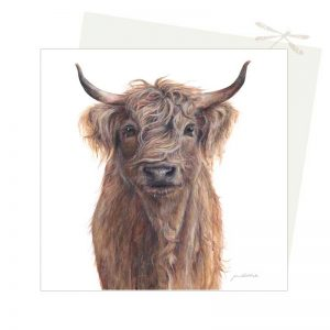 Scottish cow Card