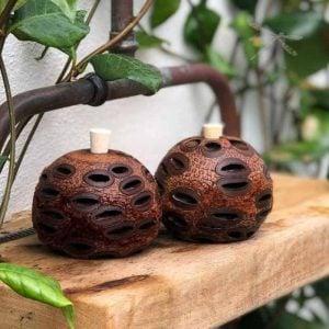 Banksia pod diffusers