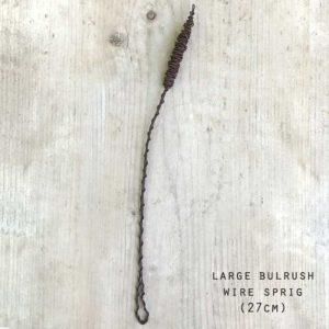 wire bullrush sprig