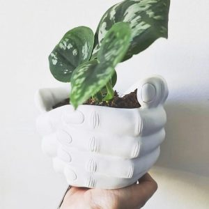 white hand planter