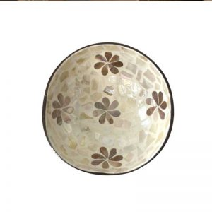 Mother of Pearl coconut Bowl