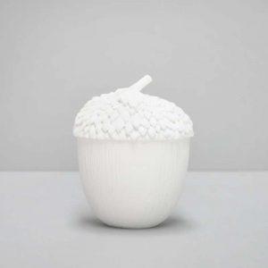 white secret acorn pot