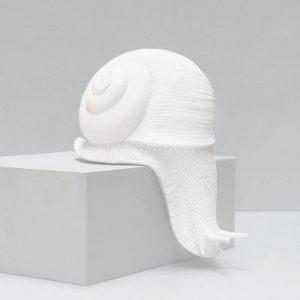 white creeping snail