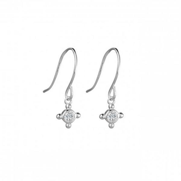 Small Silver drop earrings