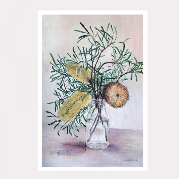 banksia delight A3 print