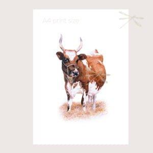 Ayrshire Cow print