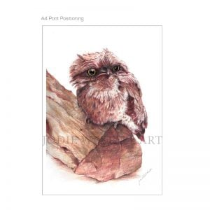 tawny frogmouth painting