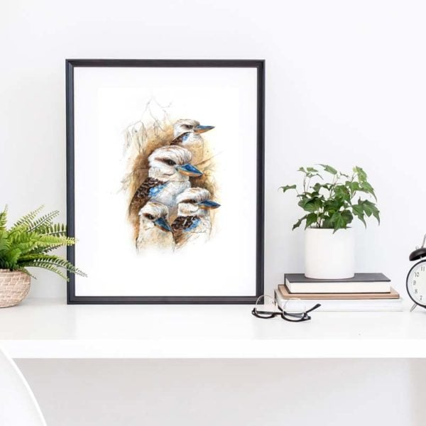 kookaburra study print
