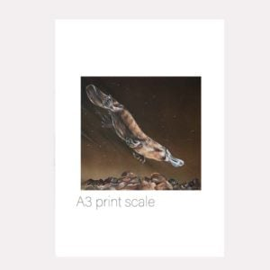 platypus print